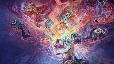 Everything You Wanted To Know About The Pineal Gland