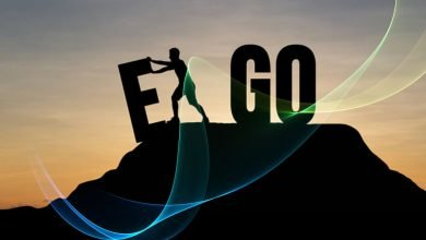 Ego: The Artificial Intelligence Of This World