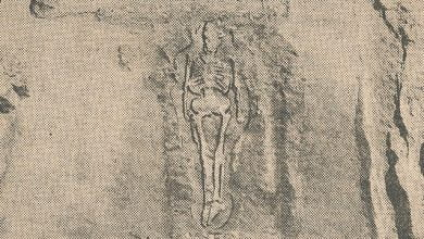 "Giant ""Skeletons of Enormous Size"" Discovered In New Mexico – New York Times Article From 1902"