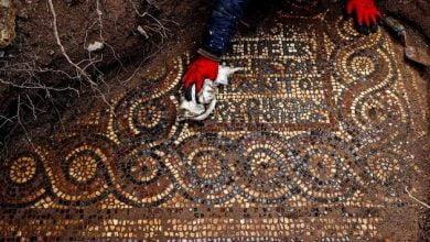 Historic Roman Monastery & Stunning Mosaic Unearthed In Turkey