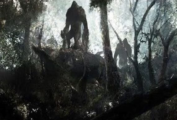Mysterious entities in the forest…