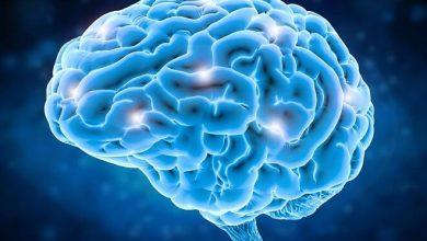 Brain Health 2021
