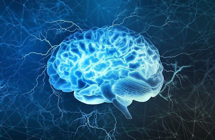 Two Powerful Ways To Nourish Your Brain
