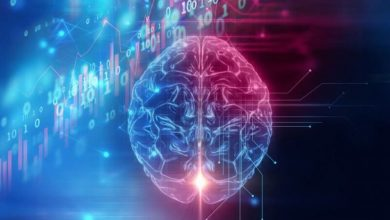 Study Shows The Heart & Brain Responding To Future Events Before They Happen
