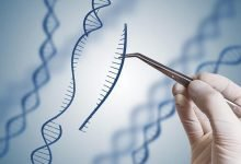Known Risks Associated With Genetically Engineered Foods That Went Ignored By The FDA