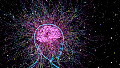 New Study Finds Humans Can Access a Higher Level of Consciousness